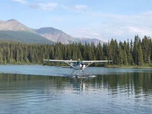 Photo of a sea plane landing on the water